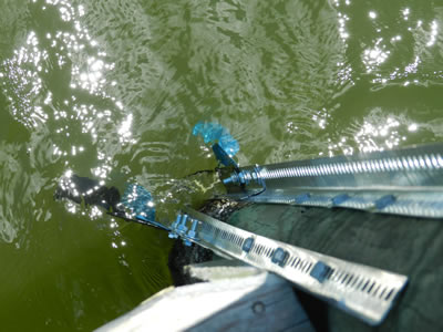watershot2